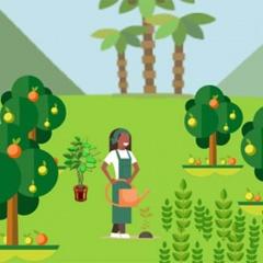 IMARA – Quantifying Nature's Benefits for People