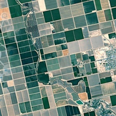 FieldSense - Simple monitoring of crop health using satellite data