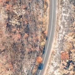 Alperion: Natural Disaster Damage Assessment Made Easy