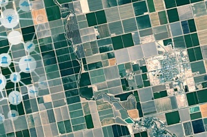 FieldSense - Simple monitoring of crop health using satellite data