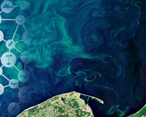 HAB Forecast - Harmful Algal Bloom Forecast