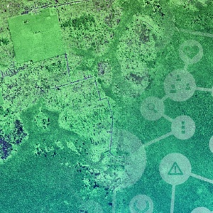 Sentinel Hub - A Satellite Imagery Web Service